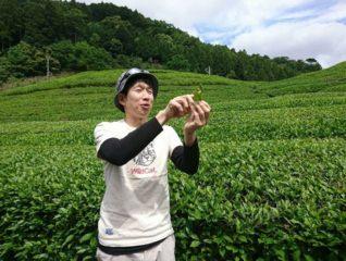 【2/7(金)・2/8(土)】[つしま大石農園]大石裕二郎さん/発酵茶人